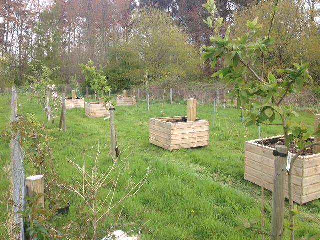 Planter boxes - community garden April 15