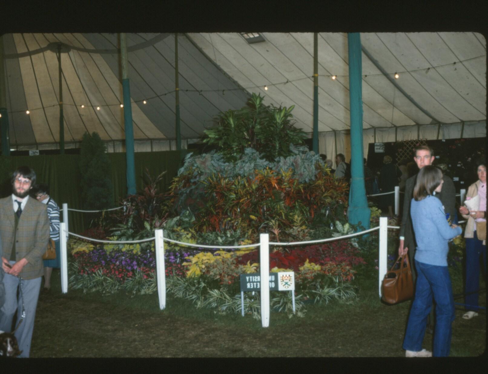 Devon county show (2)