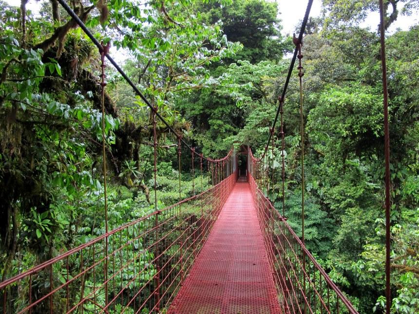 File:Monteverde puente.jpg - Wikimedia Commons