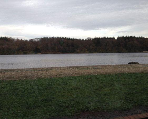 Alderley Park site