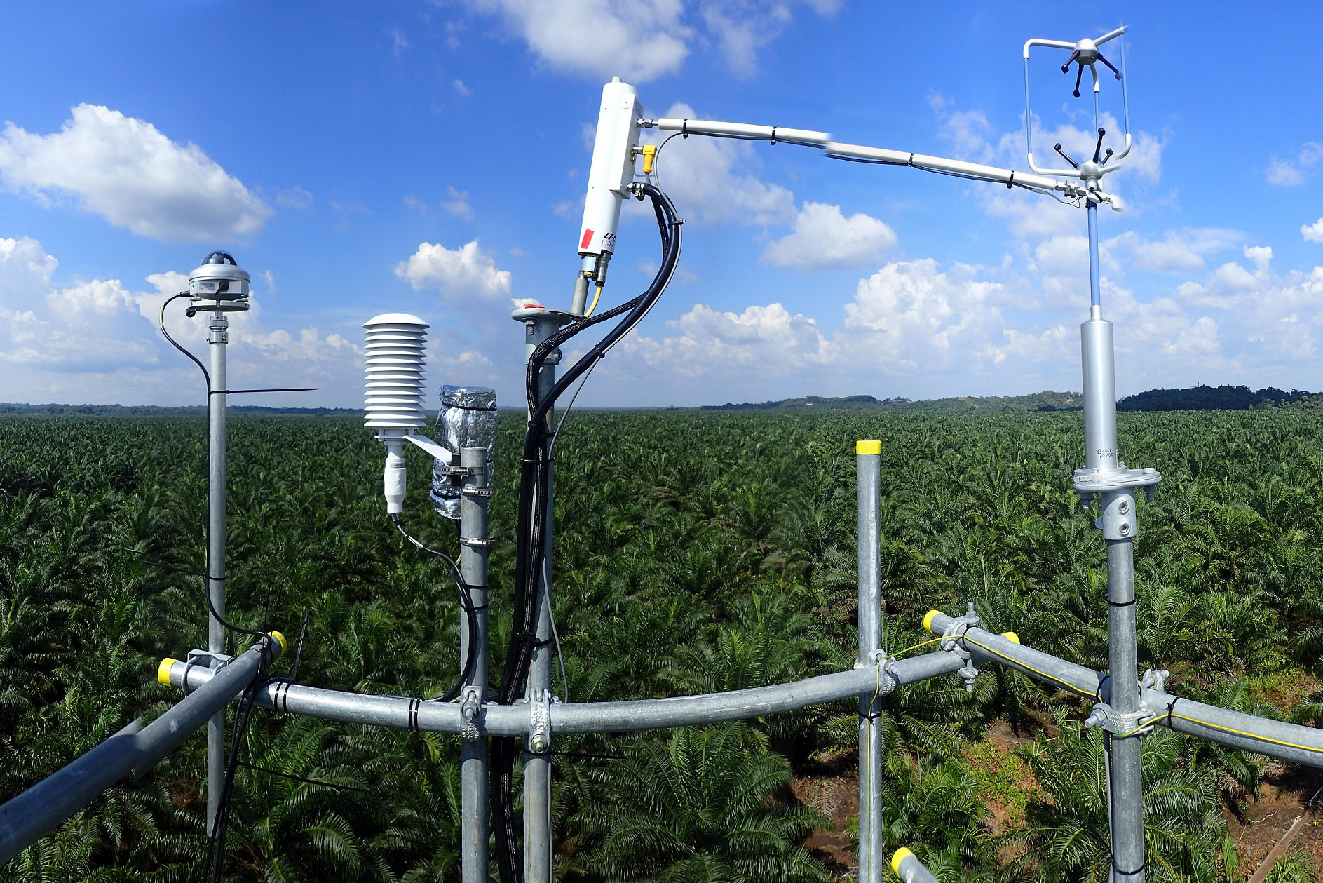 Eddy Covariance Measurements at one of our Oil Palm sites in Sarawark, Malaysia