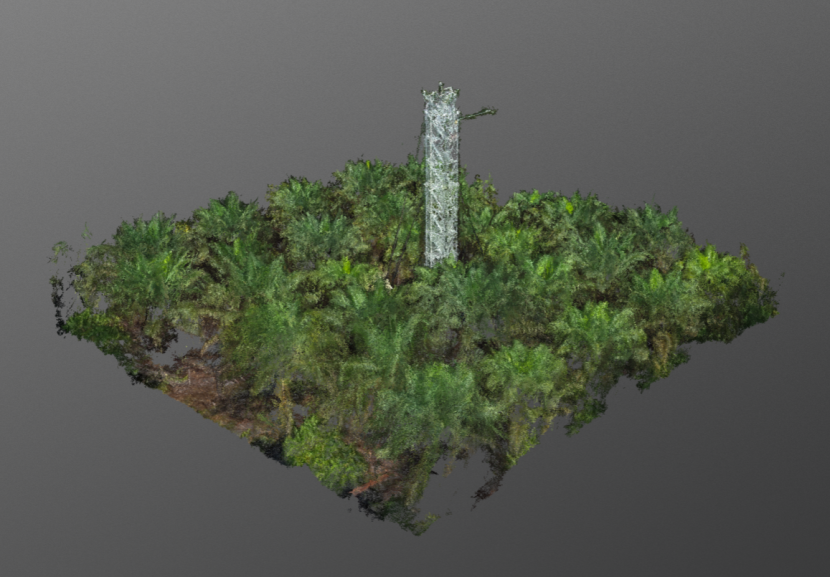 Image from Dominic Fawcett: A subset of UAV structure from motion point clouds for carbon monitoring