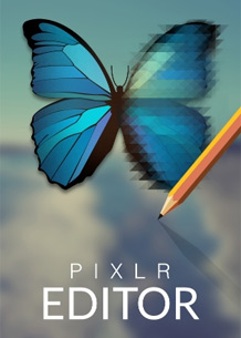 How To Resize An Image Using Pixlr Com Web Team
